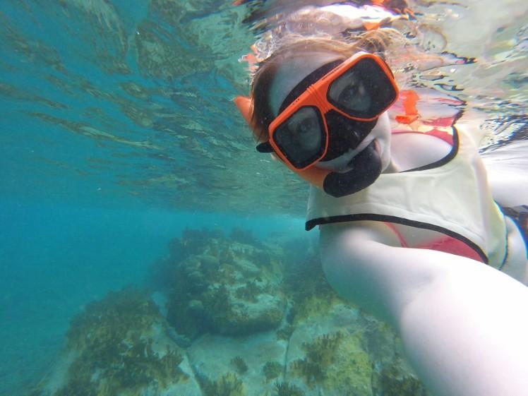 snorkel6